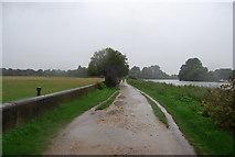 TQ1873 : Thames path Heads south to Petersham by N Chadwick