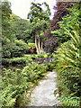 SW6430 : Trevarno Estate, Path By The Lake by David Dixon