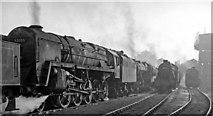 TQ2182 : Big engines at Willesden Locomotive Depot by Ben Brooksbank