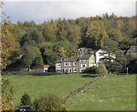 SE0419 : Houses on Ripponden New Bank  by Michael Steele