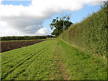 TM3995 : Footpath along a field's edge by Evelyn Simak