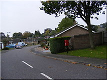 TM3876 : Old Orchard Close & Bramfield Road Postbox by Adrian Cable