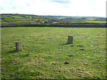 SW6836 : Part of Nine Maidens stone circle by Rod Allday