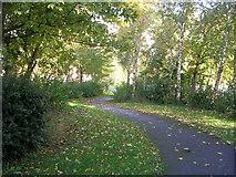 SE2333 : Footpath - Swinnow Green by Betty Longbottom