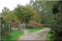 TQ2053 : Paths and gate, Headley Heath by Robin Webster