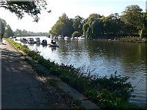TQ1774 : The Thames Path by Eirian Evans