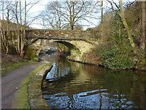 SD9726 : Bridge No21, Rochdale Canal by Alexander P Kapp