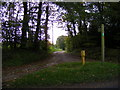 TM3769 : Footpath to Strickand Manor Hill & entrance to Park Cottage by Adrian Cable
