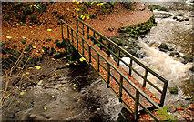 J3996 : Autumn at Glenoe 2010-4 by Albert Bridge