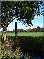 TQ1774 : Obelisk, Richmond Old Deer Park by Eirian Evans