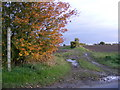TM2964 : Footpath to the B1119 Saxmundham Road by Adrian Cable