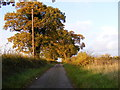 TM3465 : Hill Farm Road, Rendham by Adrian Cable