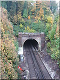 TR2548 : Entrance to Lydden Railway Tunnel by David Anstiss