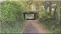 TQ1462 : Railway bridge carrying the line to Guildford via Cobham by Graham Howard