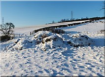 NS3878 : Remains of Nether Dalquhurn Farm by Lairich Rig
