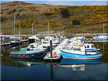 SC2484 : Boats in Peel Harbour by Colin Park