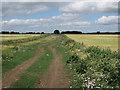 TL4174 : Gravel Pit Drove by Hugh Venables