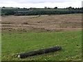 SN6166 : Rough grazing east of the Afon Ddu by Nigel Brown