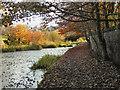 SD7706 : Manchester, Bolton & Bury Canal by David Dixon