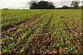 SU7598 : Crowellhill Farm by Graham Horn