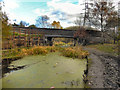 SD7606 : Ladyshore Bridge; Manchester, Bolton & Bury Canal by David Dixon