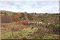 NS3085 : Rough grazing in Glen Fruin by Steven Brown
