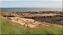 NO6106 : Beach, West Ness by Richard Webb