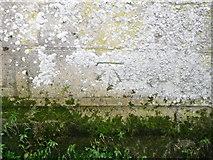 ST6834 : Bench Mark, St Mary's Church by Maigheach-gheal