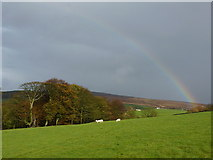 SE0950 : Rainbow in Langbar by Peter Barr
