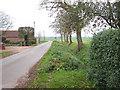 TM1092 : View south along Rode Lane, Carleton Rode by Evelyn Simak