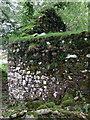 SN1133 : Ruins at Hafod Tydfil (5) by ceridwen