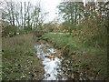 TA0762 : The stream at Bracey Bridge by Ian S