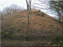 SP4802 : Jarn Mound by Shaun Ferguson