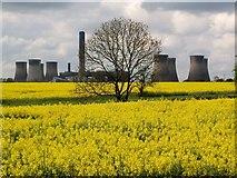 SJ5486 : Fiddlers Ferry Power Station by Brian Balfe