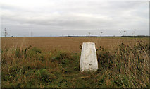SE9238 : Trig of Sober Hill with stubble field by Trevor Littlewood