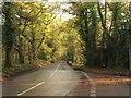 SU9484 : Pumpkin Hill by Derek Harper