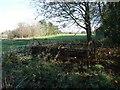 ST7765 : Old farm machine on Bath Golf Course by Humphrey Bolton