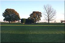TQ8789 : Rochford Golf Course by terry joyce