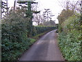 TM3052 : East Lane, Ufford by Adrian Cable
