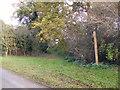 TM3052 : Footpath to Loudham Hall, Loudham Hall Road & Mill Lane by Geographer
