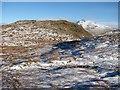 NN2205 : North ridge of Ben Donich by Richard Webb