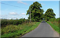 NT9834 : Country road near Fenton (3) by Stephen Richards