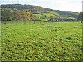 SO5312 : Beaulieu Farm by Trevor Rickard