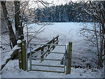 SO0153 : Footbridge on the Wye Valley Walk in winter by Jeremy Bolwell