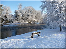 SO0153 : Bench beside the River Wye in winter by Jeremy Bolwell