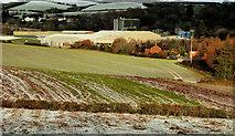 J4774 : Fields, Newtownards (1) by Albert Bridge