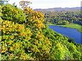 NN8659 : Loch Tummel by Maigheach-gheal