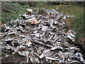 NY5786 : Remains of Crashed Halifax Bomber by Les Hull