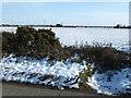 TF4816 : Pylon country near Walpole substation by Richard Humphrey