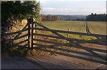 SX7962 : Gate, Dartington by Derek Harper